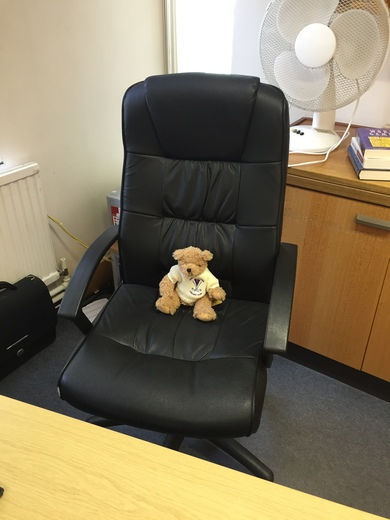 This Crocus Bear sat in the Head Teacher's chair!