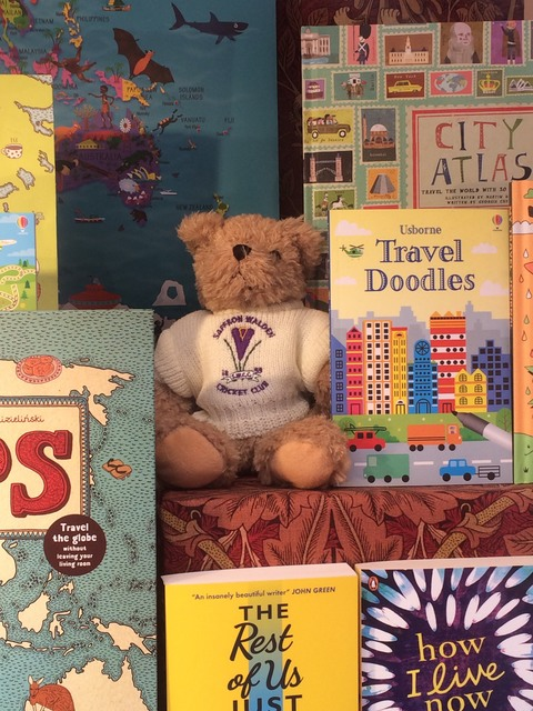 This Crocus Bear likes Hart's Bookshop in Saffron Walden