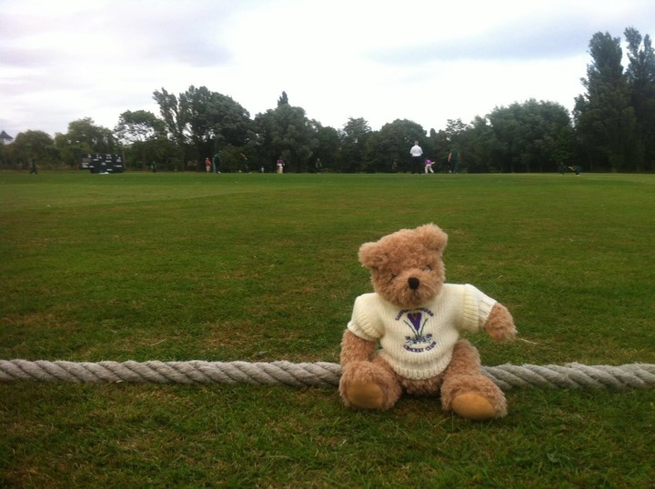 This Crocus Bear went to see the U19s play at Colchester