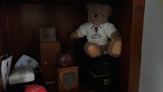This Crocus Bear went to Australia with international Umpire Steve Davis - and sits next to a cricket ball with which his father got ten wickets in an innings!