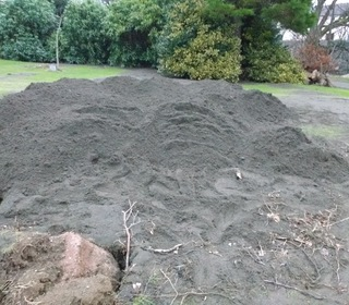 our mountain of silt!