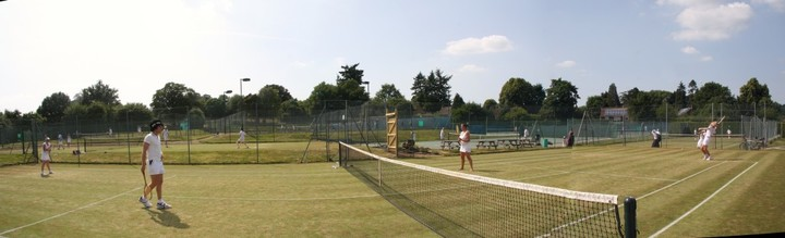 Grass courts in action