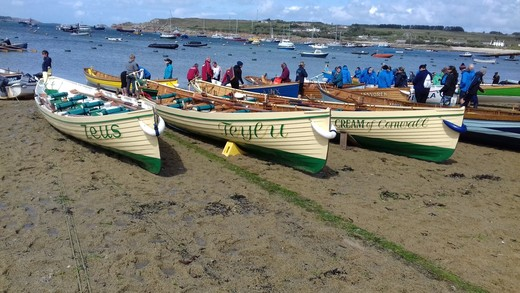 Cotehele Gigs lined up, raring to race!