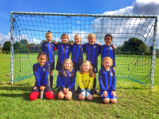 AFC Market Bosworth Girls U9