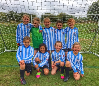 AFC Market Bosworth Girls U8