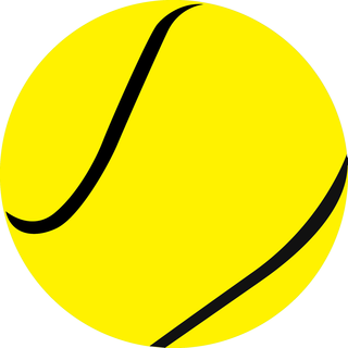 Yellow/Black Ball