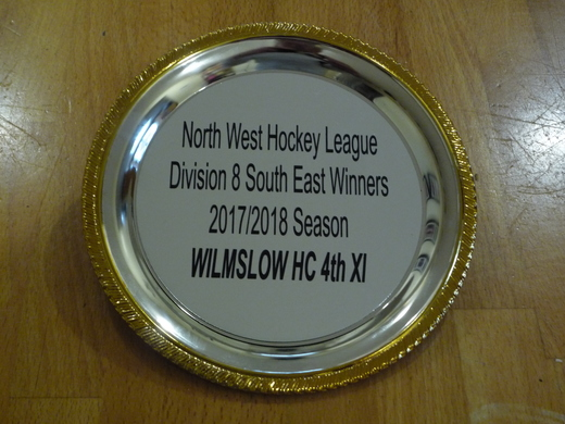 NWHL Division 8 SE Winners 2017-18