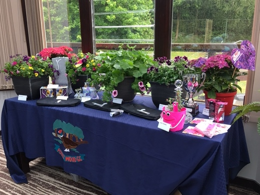 Lady Captains Day Prize Table 2019