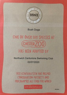 Bush Dog Cert