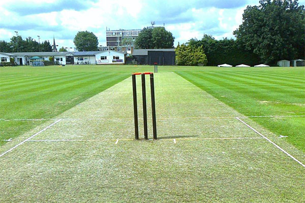 Lashings Wicket