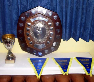 Silverware and pennants from the 2005 season. Not since 1996 have we failed to receive at least one award at the annual League Dinner and Presentations. Only once since the League was restructured and Premier Divisions and 4th Xl Divisions introduced in 1