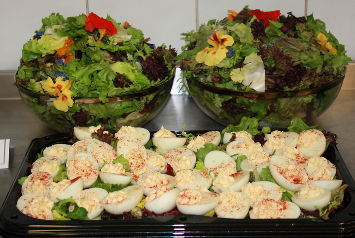 Devilled Eggs and Green Salad (with edible flowers)