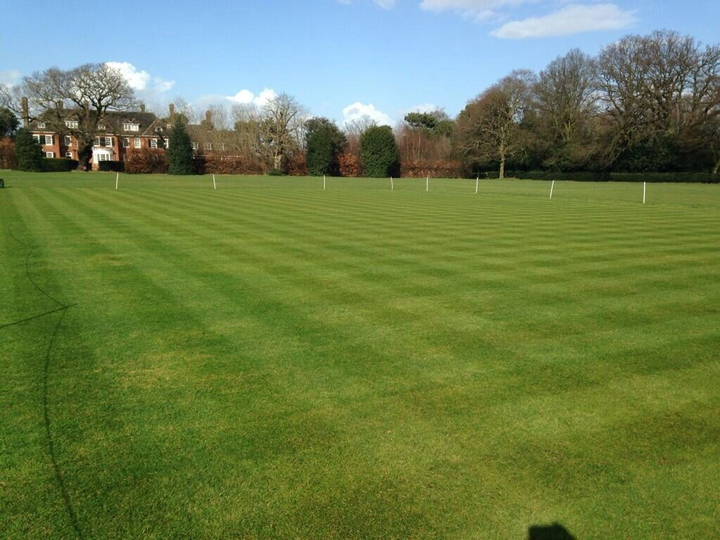 27/02/14 - first cut of the year - looking good already