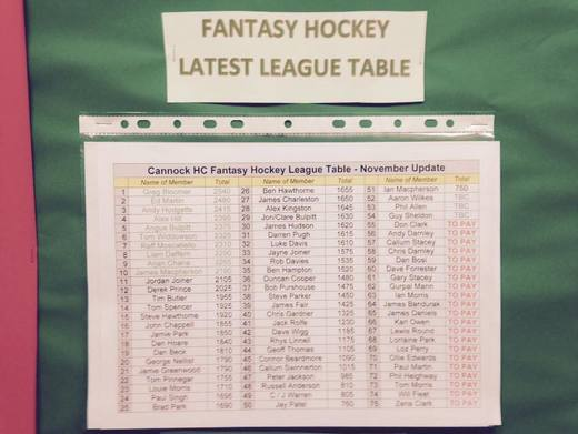 Fantasy Hockey League Table Latest Nov '14