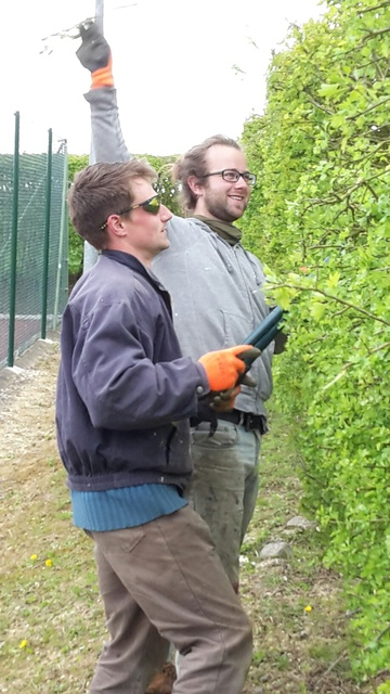 Tackling the thorny and stubborn hedge