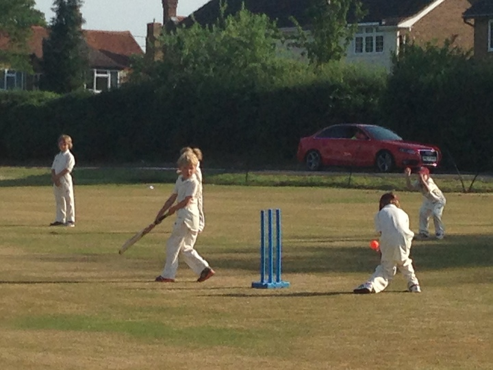 Nearly a wicket!