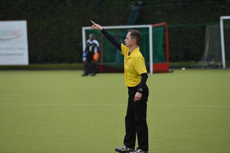stock umpire