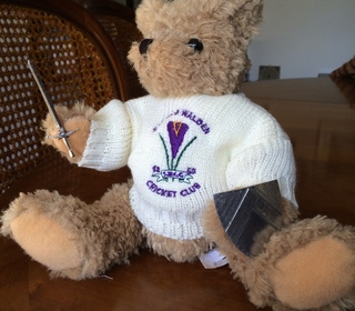 This Crocus Bear is the mascot for the Walden Warriors (U19s)
