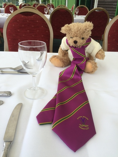 This Crocus Bear put on a club tie for the VPs' lunch.